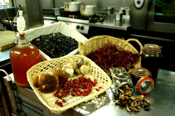 Wild-Foods-in-the-Strawberry-Tree-Kitchen1