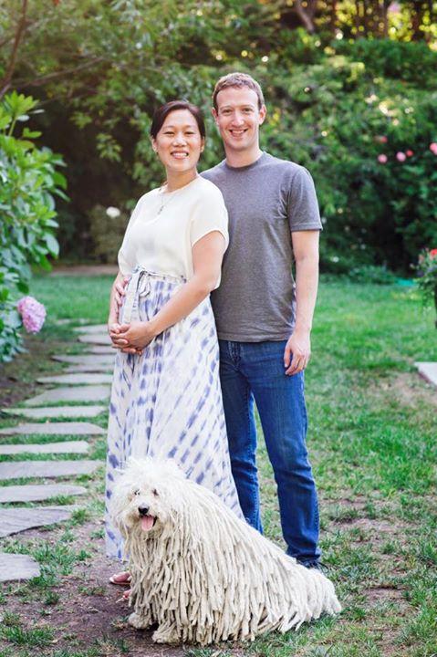 Mark Z Facebook