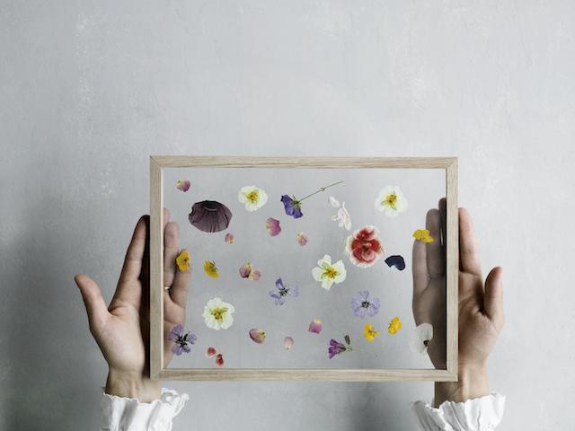 Moebe flower frames